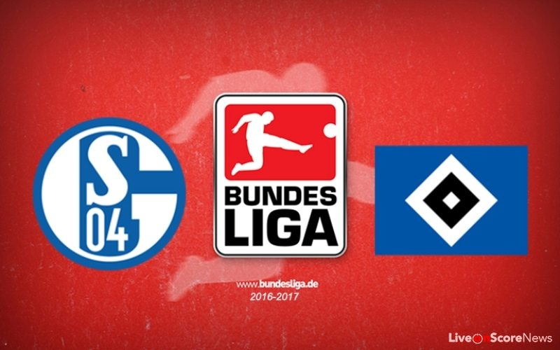 Schalke Vs Hamburg